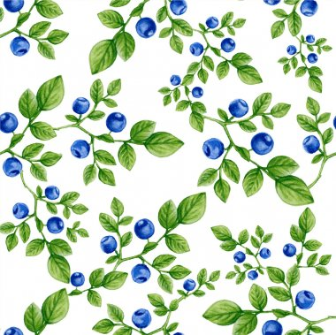 blueberry pattern