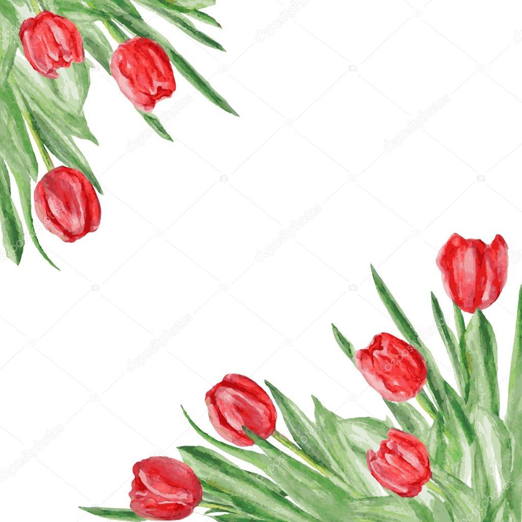 Sulu Boya Lale çiçek Tasarlanmış Köşe Stok Vektör M E L 86351500
