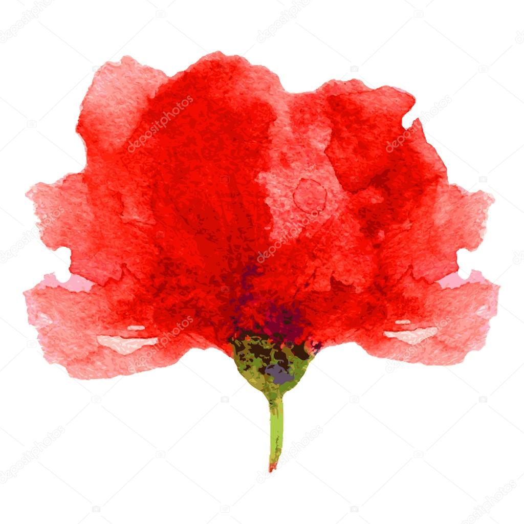 Watercolor red poppy flower stock vector m e l 90746266 poppy flower watercolor illustration isolated on white background floral design vector elements vector by m e l mightylinksfo