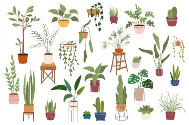 Home plants in pots isolated scenes set. Different houseplants flowerpots. Green garden for decoration. Bundle of modern scandinavian interiors. Vector illustration in flat cartoon design elements icon