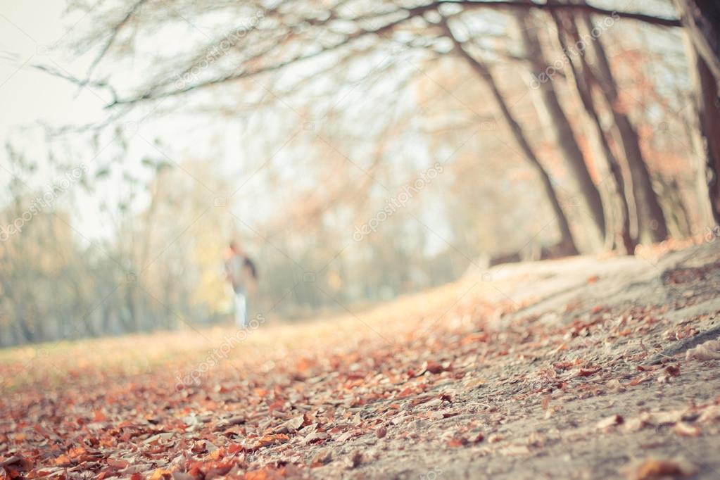 Der Hintergrund jedoch unscharf Herbst Landschaft — Stockfoto ...