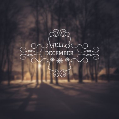 Hello December. Winter background. Greeting Card. Typographic design