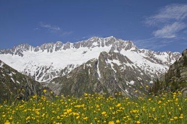 Goeschen alp