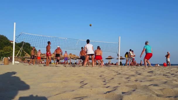 Beach Volley Ball hra