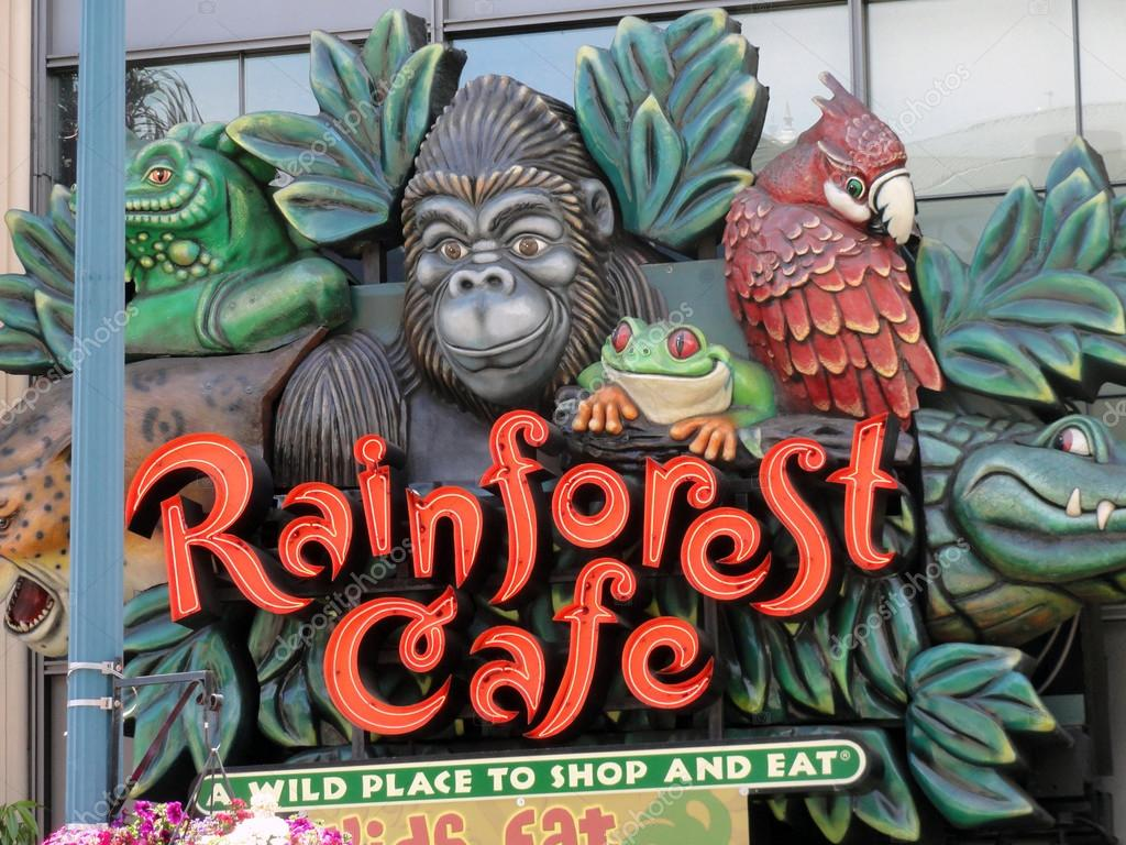 rainforest cafe a wild place to shop and eat Rainforest cafe, located at ontario mills®: a wild place to shop and eat discover a realistic indoor rainforest, complete with lush vegetation, tropical rainstorms, trumpeting elephants and entertaining gorillas the menu features an assortment of favorites, including pastas, seafood, salads, signature.