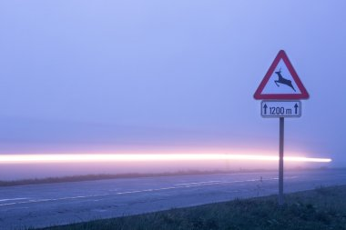 Deer crossing roadsign
