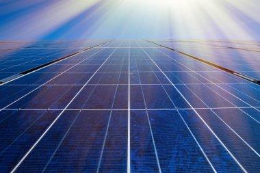 Solar panels and sunrays