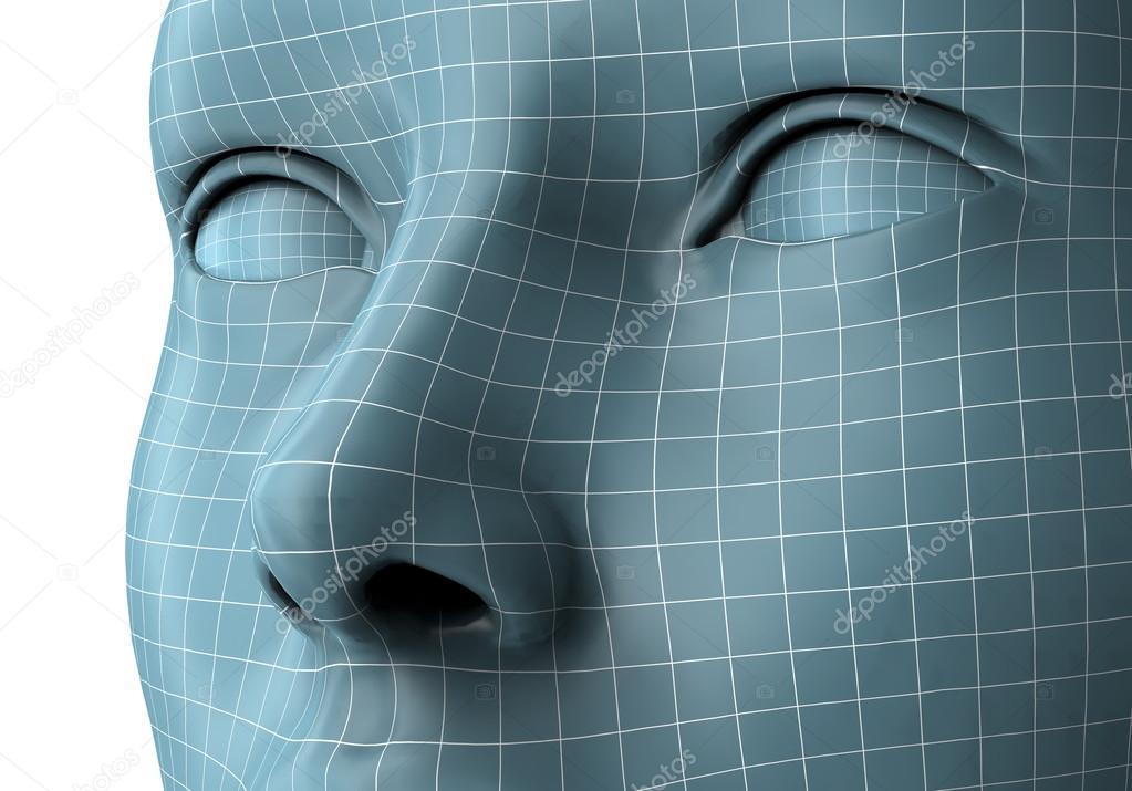 Gesicht der Frau im Drahtmodell Linien isoliert auf weiss ...