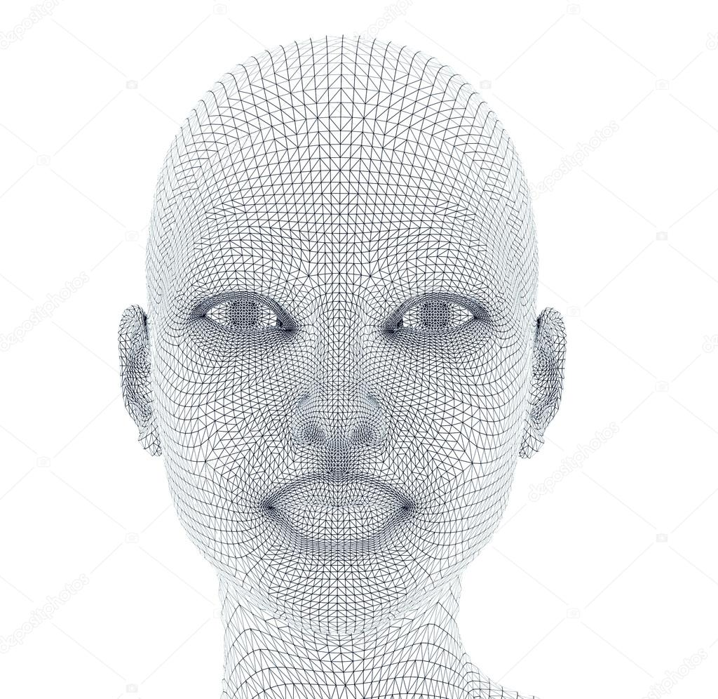 woman face in wireframe lines isolated on white. — Stock Photo ...