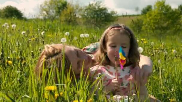Frühlingswiese Clip # 2