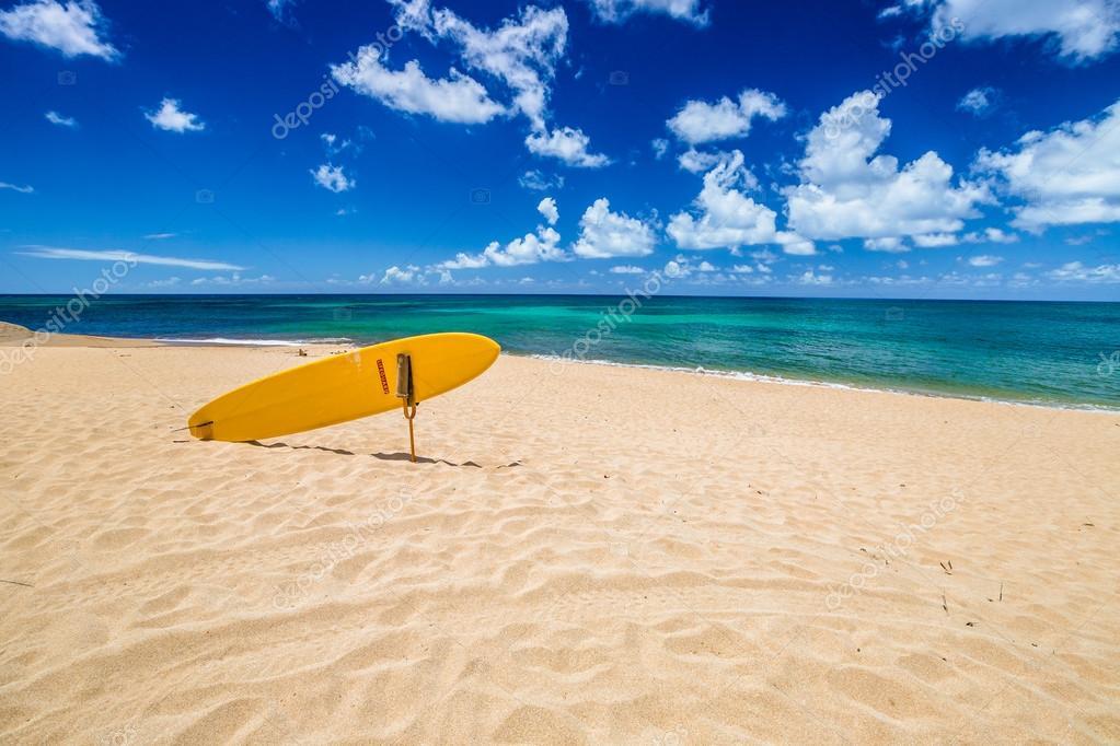 North Shore Surf Rescue