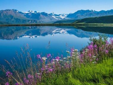 Tanana Valley Alaska