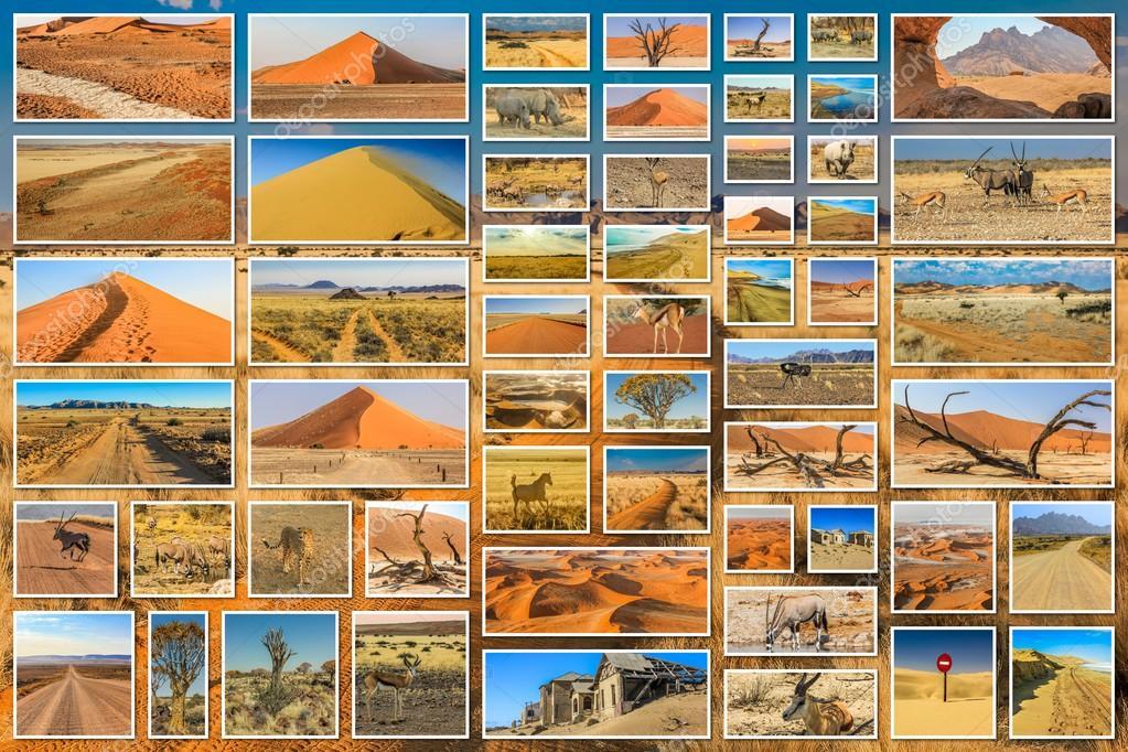 African desert collage