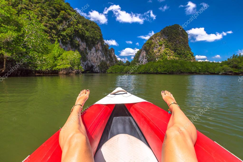 kayak in mangrove forests