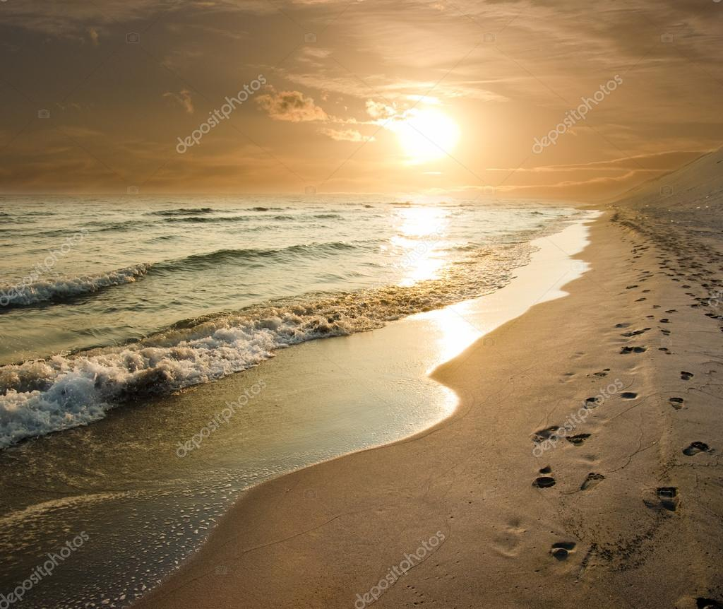 Golden Sunset On The Sea Shore