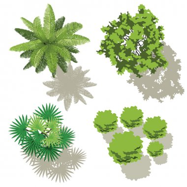 4 trees, top view