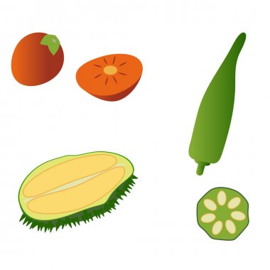 Durian, persimmon and okra isolated on white background. Editable and design suitable vector illustration.
