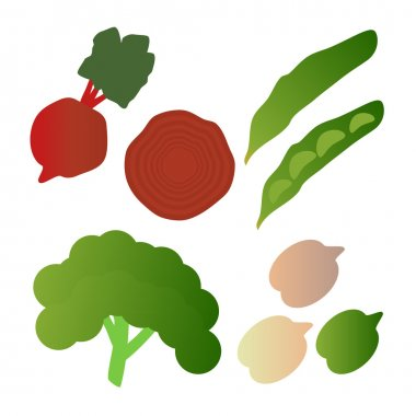 Kale, broad beans, beets,  isolated on white background. Editable and design suitable vector illustration.