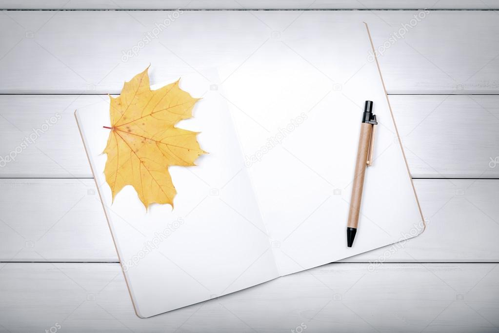 Exercise book with pen and autumn leaves.