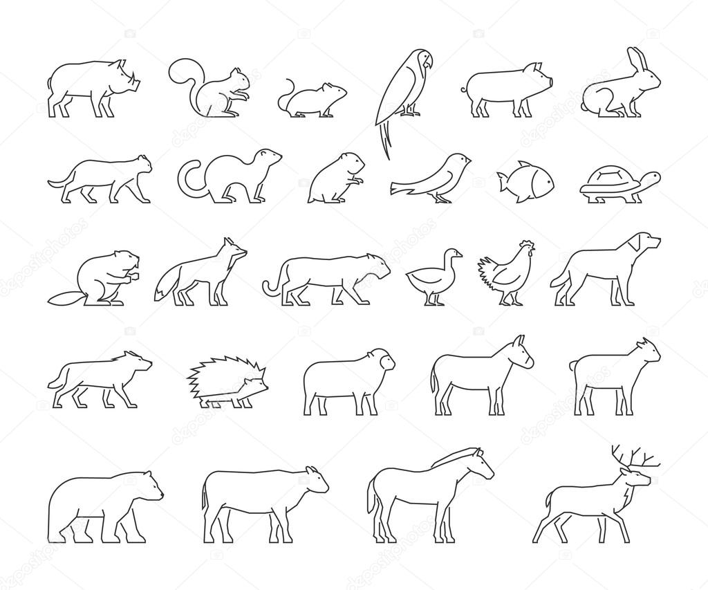 Vector line set of domestic and wild animals.