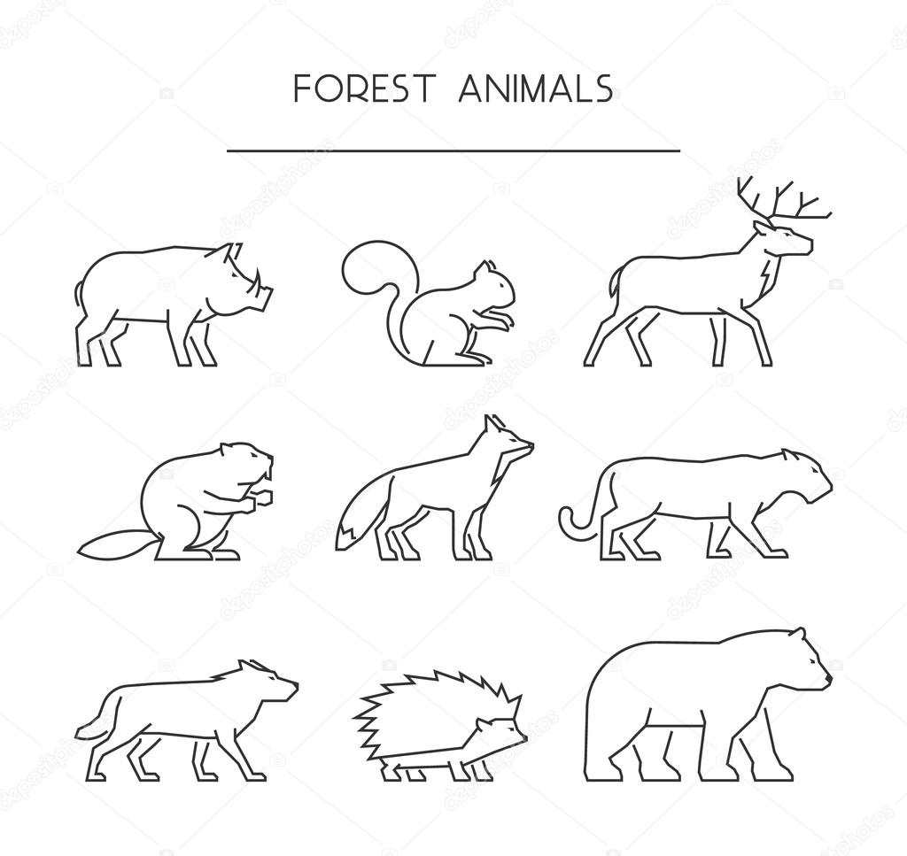 Line Set Of Forest Animals Linear Silhouettes Animals