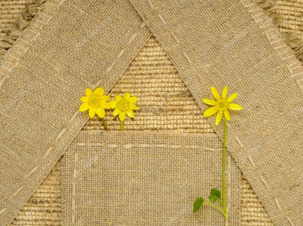 Flores amarillas, verde hierba y arpillera marco con espacio para ...