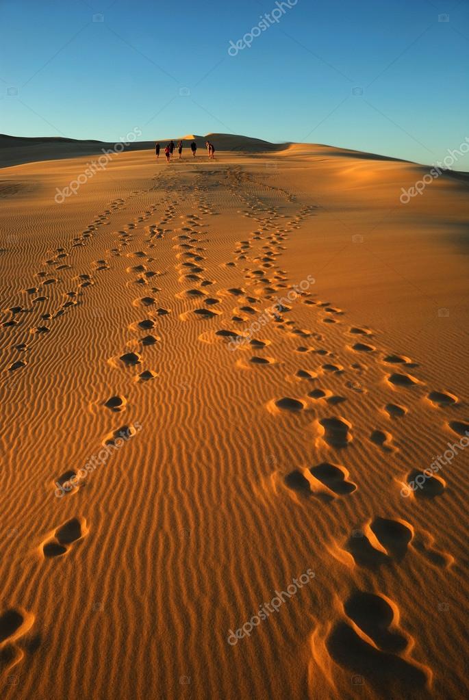 Group in desert
