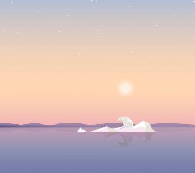 polar bear on the iceberg