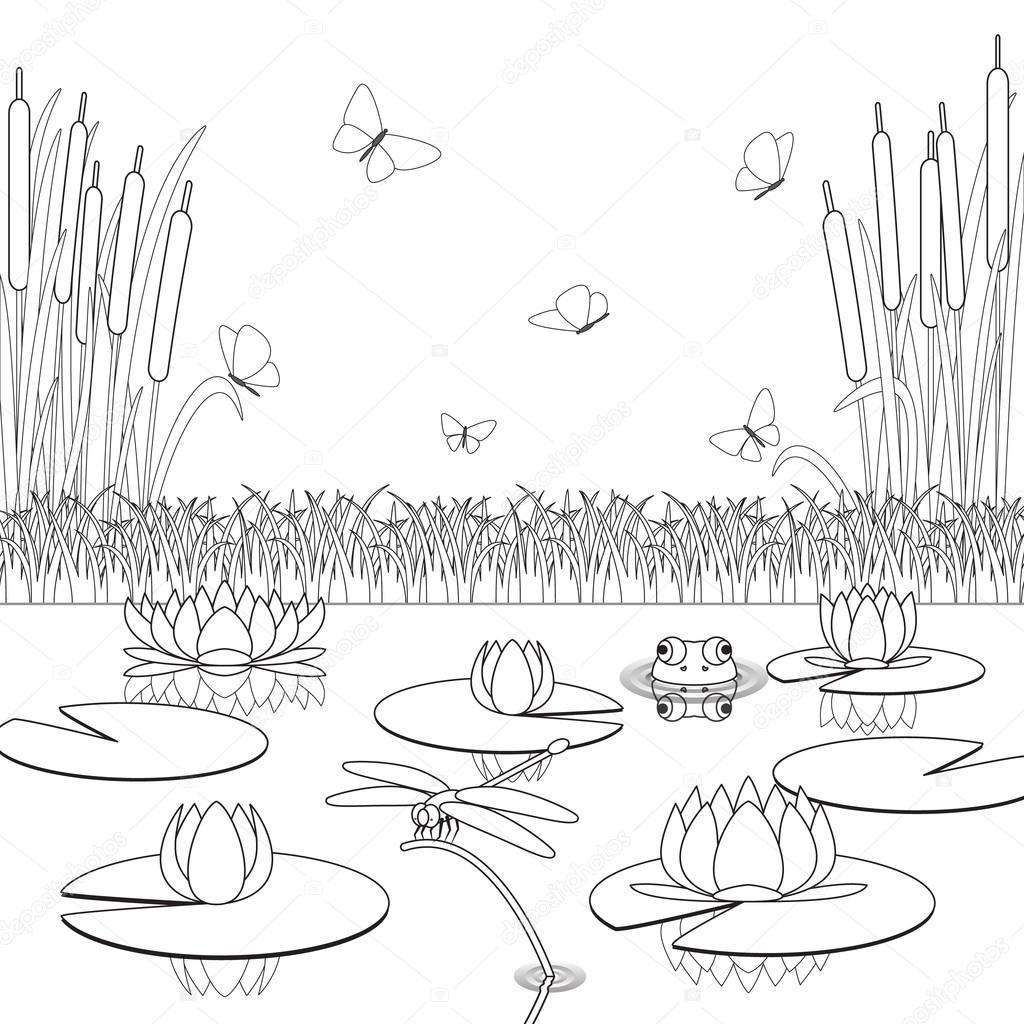 kleurplaat met vijver inwoners en planten stockvector