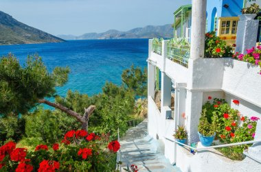 Greek studio with flowers and white teracce Greece