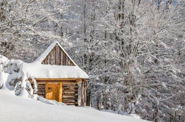 Quiet mountain cabin in winter