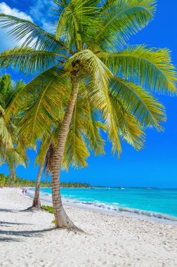 Exotic Caribbean beach with white sand
