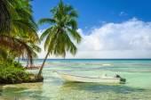 Fotografia Esotica costa con barca da pesca ormeggiate