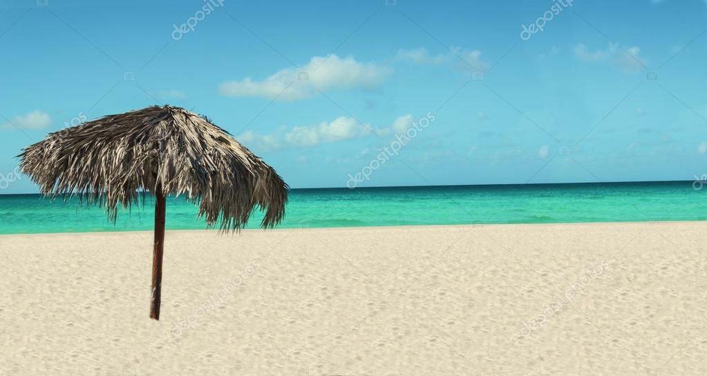 tropical beach with palm tree umbrella