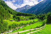 Fotografie Zelené louky, vysokohorské chaty a horské vrcholy