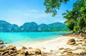 Fotografie Fabulous beach with exotic plants and white sand