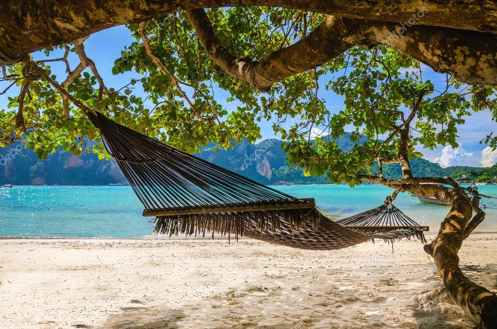 Hammock hanging under exotic tree on beach
