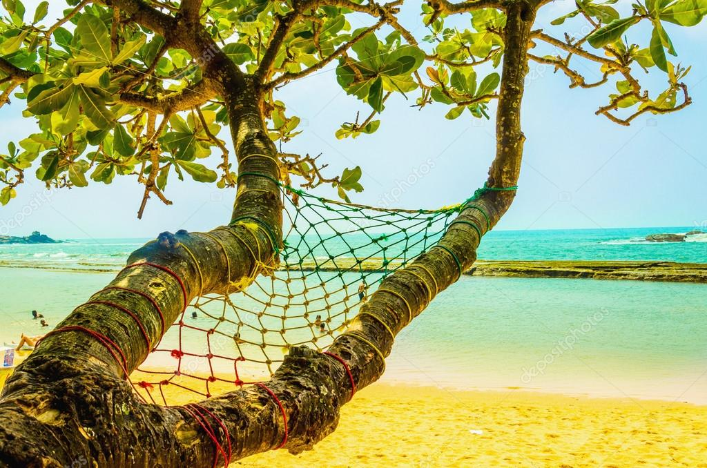 Exotic sandy beach hammock,  ocean and golden sand