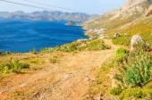 Photo Greek beautiful wild landscape