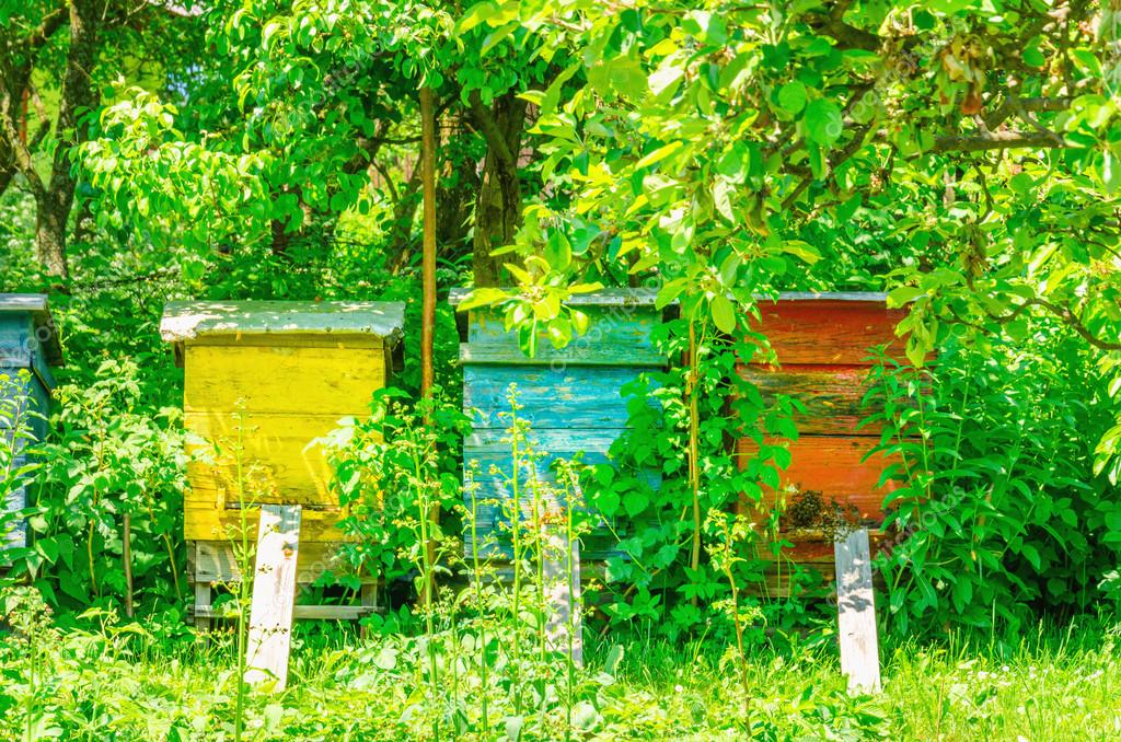 Colorful hives in traditional village
