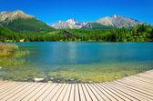 Fotografie Dřevěné plošině s výhledem na jasné horské jezero