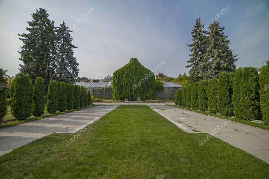 Schöne Gasse Im Park Mit Grünen Bäumen Und Büschen Im Garten U2014 Foto Von  Shkliarov