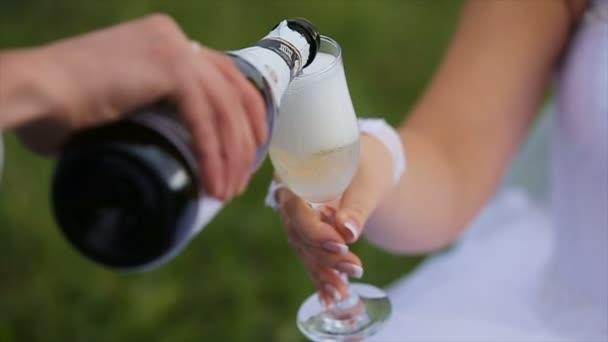 Nevěsta a ženich na zelené louce v letní den