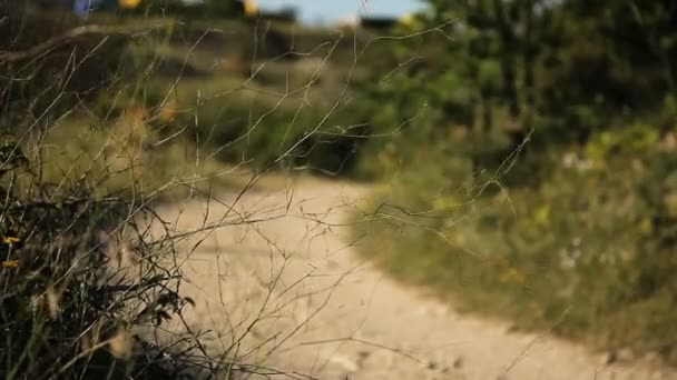 Žena cyklisty, jízdu na horské cestě na horském kole.