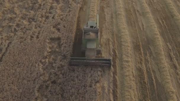 Letecký pohled na kombinovat sklizně pšeničné pole.