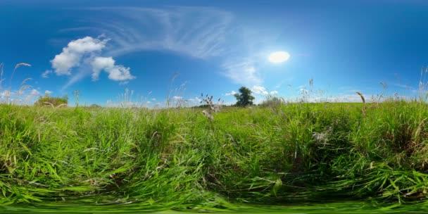 Krajina s letní loukou. 360-stupňové zobrazení.