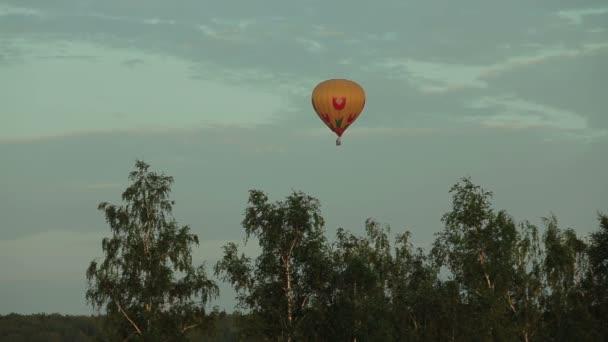 Heißluftballon fliegt über Feld im Grünen