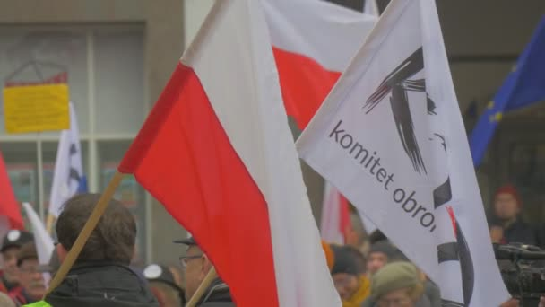 Peoples Faces Flags Democracy Committees Rally Opole Poland Meeting Against President Andrew Duda Actions Activists Holding Banners Waving a Polish Flags