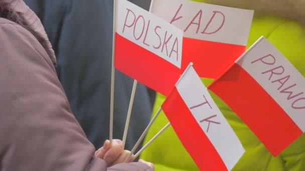 Woman is Holding Small Paper Polish Flags Democracy Committees Rally Against President Andrew Duda Actions Opole Poland People Activists at the Meeting