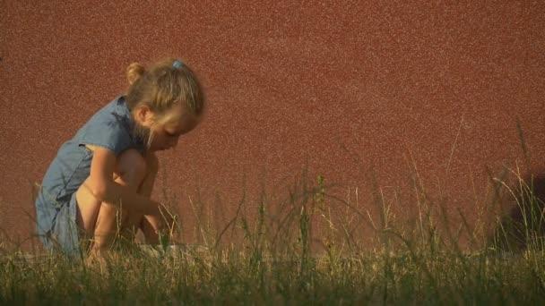 Malá blondýnka v modrých šatech na hřišti, zahradě, hraní, shromažďování, něco na pole, jak odchází